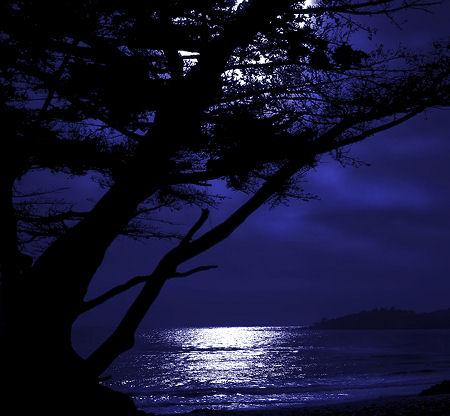 moon over carmel california