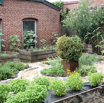 Garden at the Jefferson Hotel