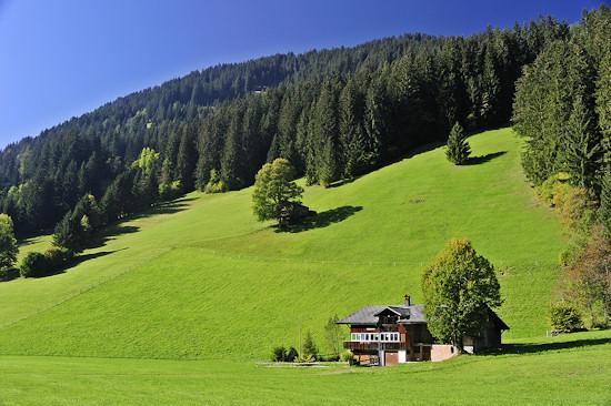 Swiss farmhouse with green fields.