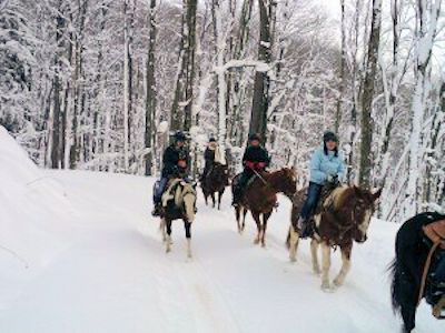 Winter horseback riding in Bradford at The Glendorn Lodge.