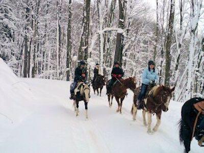 Winter horseback riding in Bradford at The Glendorn Lodge.