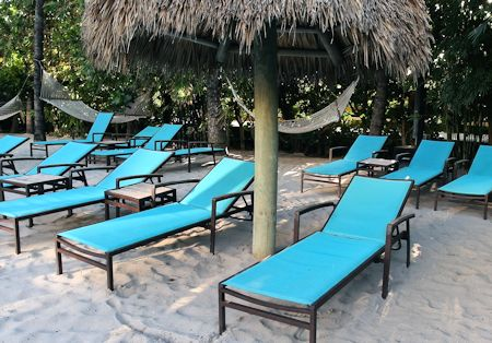 Lounge Chairs Around Pool Area At The Palms Hotel/Spa, Miami / South Beach