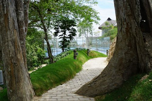 Path on the Matlali property